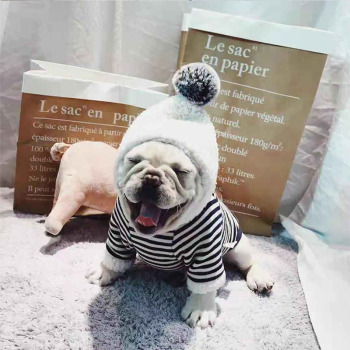 Striped Cotton Hoodies for Small Dogs