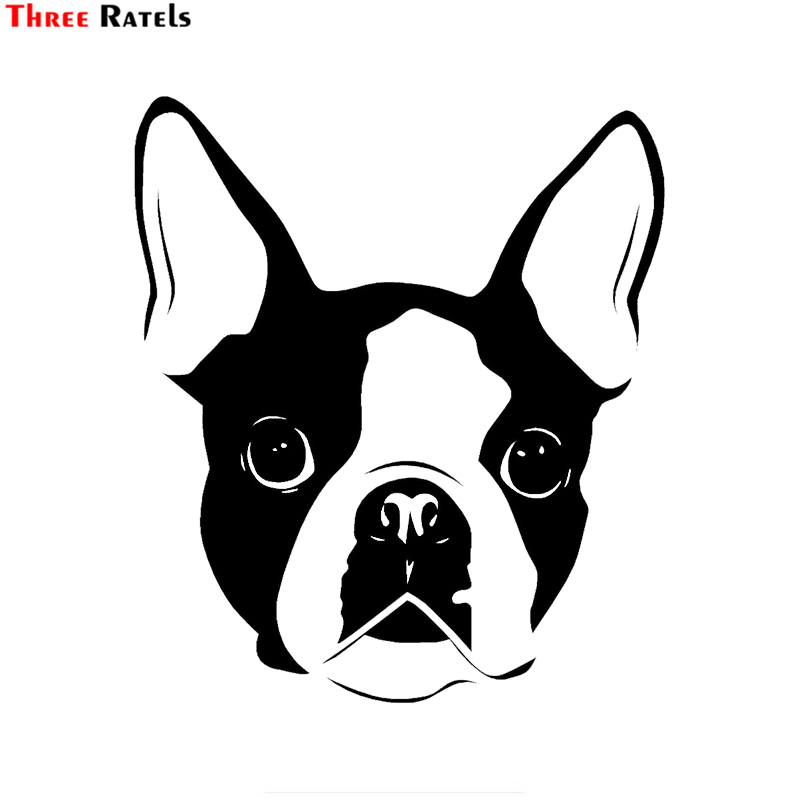 Three Ratels TZ-1888# 15x17cm Boston Terrier Car Sticker Funny Car Stickers Styling Removable Decal