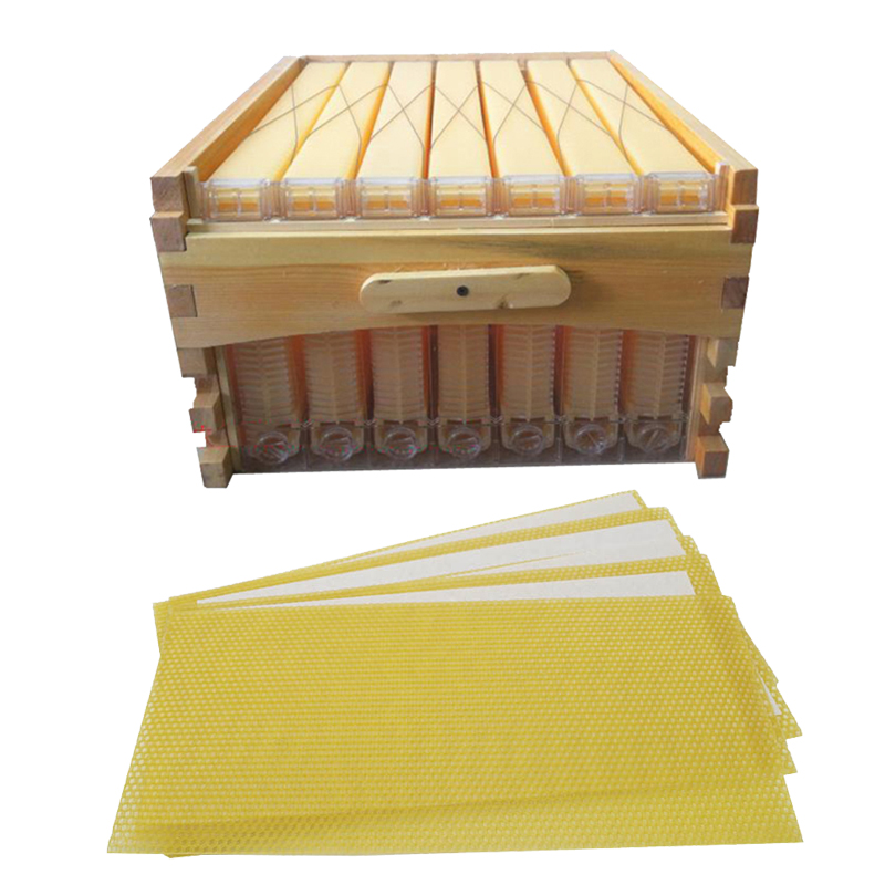 Free ship automatic honey flow hive honeycomb 7 frames with super box beehive colmena hive flow 30PCS traditional honeycombs kit 8 frames reversible electric honey extractor