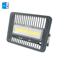 DBF 220v 110v LED Flood Light 30W 50W 70W 100W Floodlight IP66 Waterproof LED Spotlight