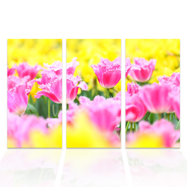 3 Pieces Pink Flower Painting Garden Scenery Canvas Wall Art HD ...