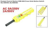Pendant Control Station COB 63A Crane Hoist Button Switch 5A 250VAC 2A 500VAC