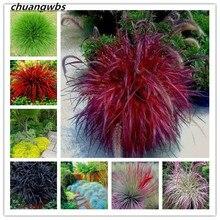 100pcs/bag Fescue Grass(Festuca glauca)garden drought tolerant Ornamental Grass flores Perennial Bonsai Plants Home DIY