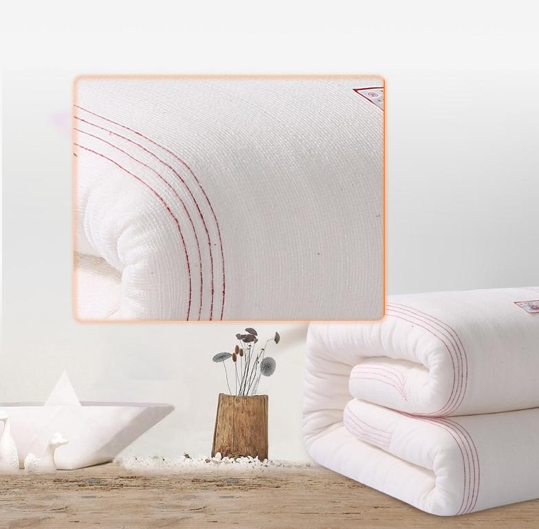 220240 Thick Comforters Gauze Quilt Core Fresh Long Staple Cotton