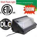 Lumière extérieure IP65 13000LM 100 W de paquet de mur LED de capteur de gradation de plongeur de MeanWell de puce de CREE 5 ans de garantie DHL