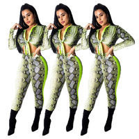 Hot Sale Sexy Snakeskin Print 2 Piece Set Spring Front Lace Up Long Sleeve Crop Top And Bodycon Trouser High Street Sets MDO900S