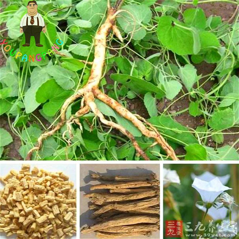 anti-tumor herbal medicine