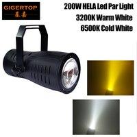 Freeshipping High Power 200 W COB Aluminium Led Par Licht Vorst Lens Dmx Warm Wit Koud Wit Optionele LCD display