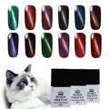 6 Bottles/Set 10ml BORN PRETTY Magnetic Cat Eyes Gel Soak Off UV Gel Polish No Black Base Needed
