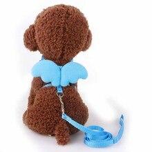 Angel Wings Dog Leash & Collar
