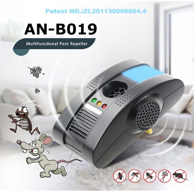 AN-B019 01