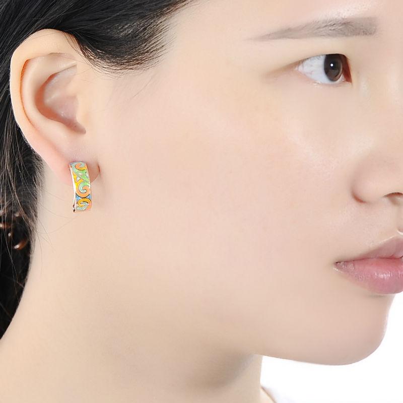 E303903ENM4SR925-001-Silver Earrings