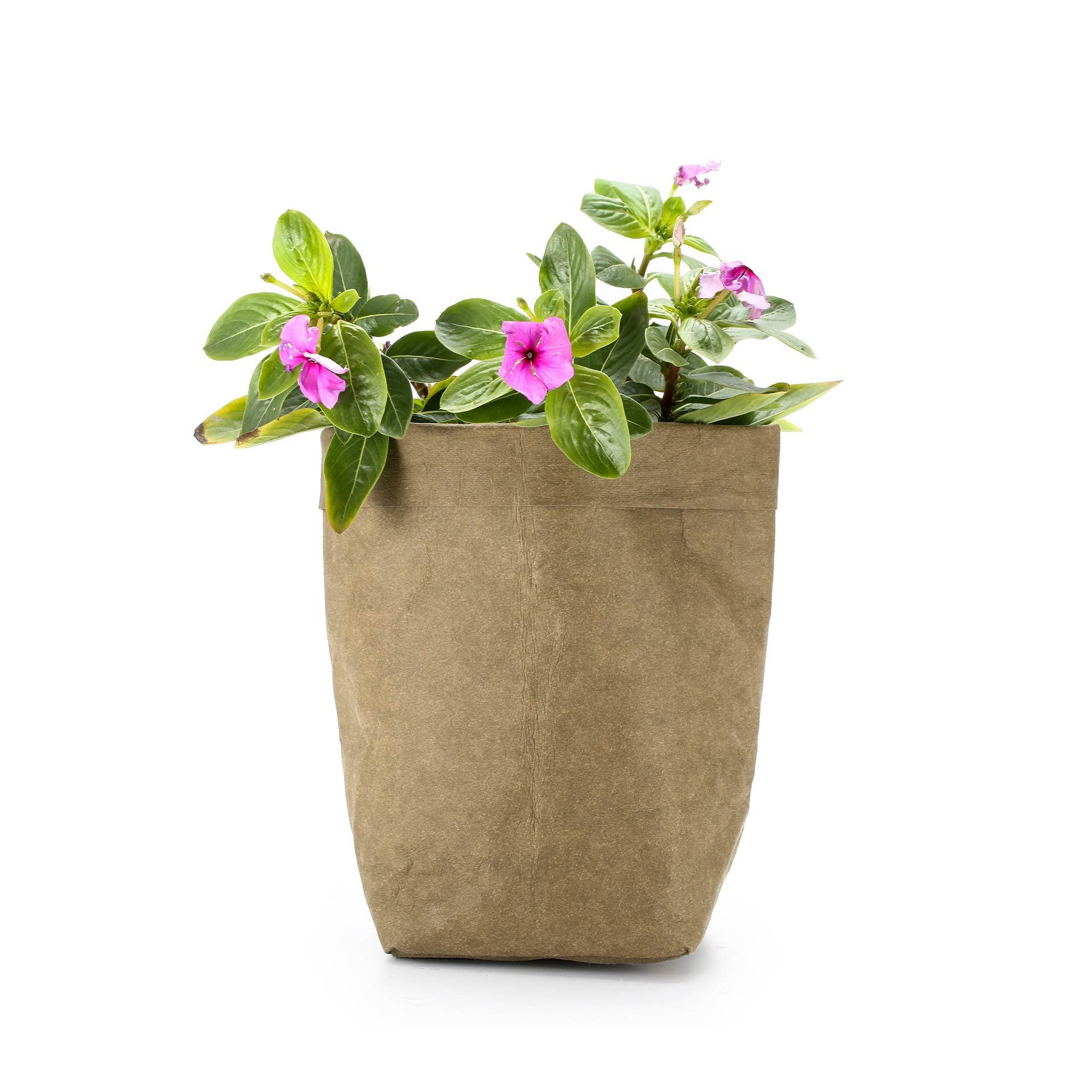 Image 5 - Washable Kraft Paper Bag Plant Flowers Pot Multifunction Home Storage Bag Reuse Art Vase Pot Reusable For Home Decor-in Flower Pots & Planters from Home & Garden