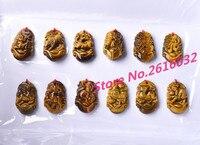 12 ADET Doğal ürünler ve yeşim kolye erkek ve kadın tipi oniki zodyak göz taş kolye KOLYE