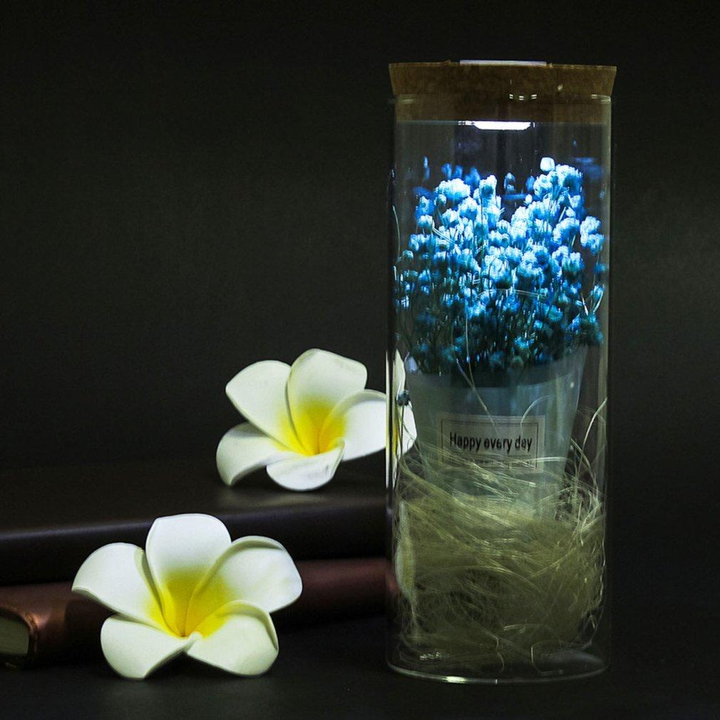 Led Light Dried Flower Ornament Micro Landscape Terrarium Seal