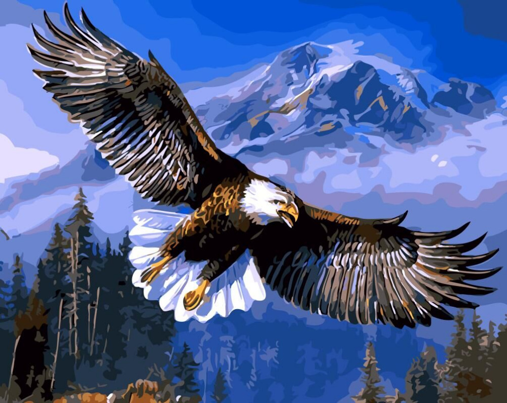 Hq Eagle Soaring Home Decor No Frame Digital Painting