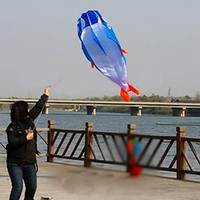 On Sale 3D Kites Huge Parafoil Giant Dolphin Blue Power Kite Outdoor Sports Easy To Fly