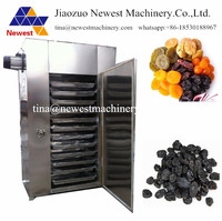 Automatic salad fruit dehydrator machine ,vegetable and fruit dehydration machine ,commercial fruit and vegetable dryer