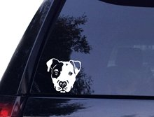 PIT Face - Pit bull Pitbull Dog Vinyl Car Decal, Laptop Decal, Car Window Wall Sticker (4in, White) 3 sizes animal pattern cute pet dog bull terrier car sticker window motorcycle laptop decal vinyl tape 3m h3510