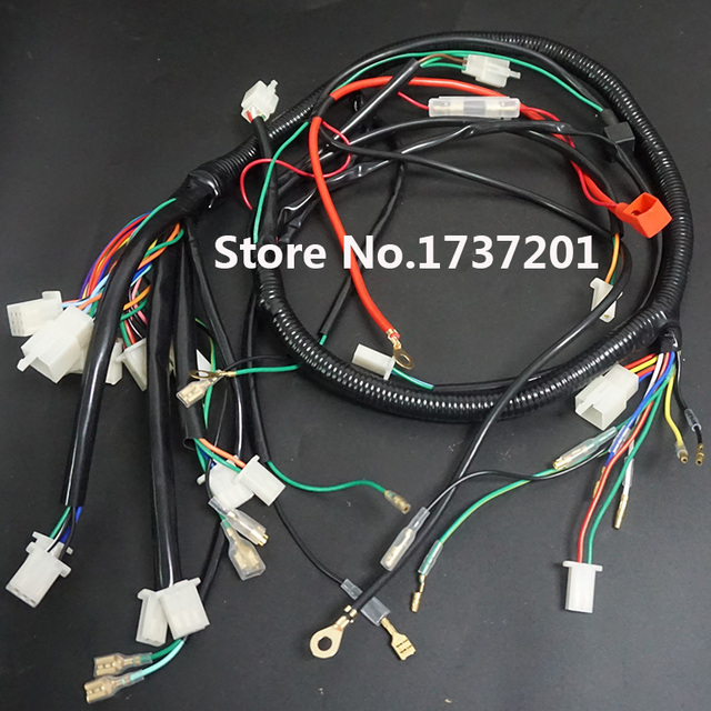 Electric start wiring loom harness 200cc 250cc 300cc atv pit quad electric start wiring loom harness 200cc 250cc 300cc atv pit quad bike atomik thumpstar buggy go asfbconference2016 Image collections