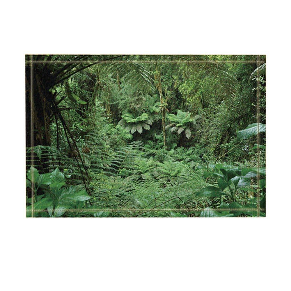 Tropischen Regenwald Decor Palm Baume Mit Exotischen Pflanzen In