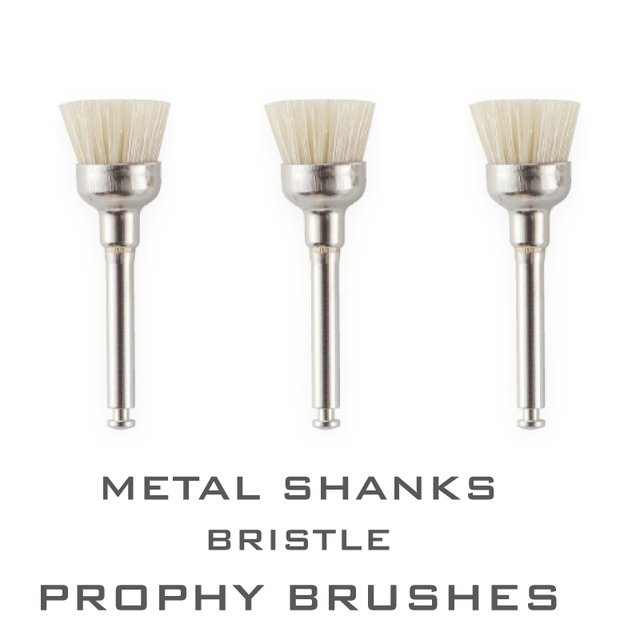 40 Pieces Oral Dental Supplies Disposable Metal Shanks Bristle Prophy Brushes