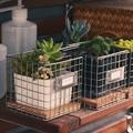 1 шт. мини 10 x 10 x 10 см современные железный завод цветок филигрань пот держатель Multifuction для хранения дома магазин украшения