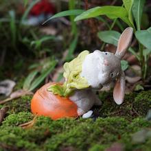 Кролика тянет морковь от земли. Миниатюрные сказочные Садовые принадлежности Террариум аксессуары фигурка животного DIY