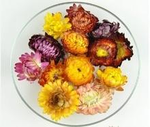 цена на Dry flower Colorful Chrysanthemum Natural dried Flower heads wedding flower centerpieces Preserved Flower 6PCS