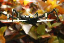 3D upside down flight / inverted flight 2.4Ghz 6ch mini rc drones