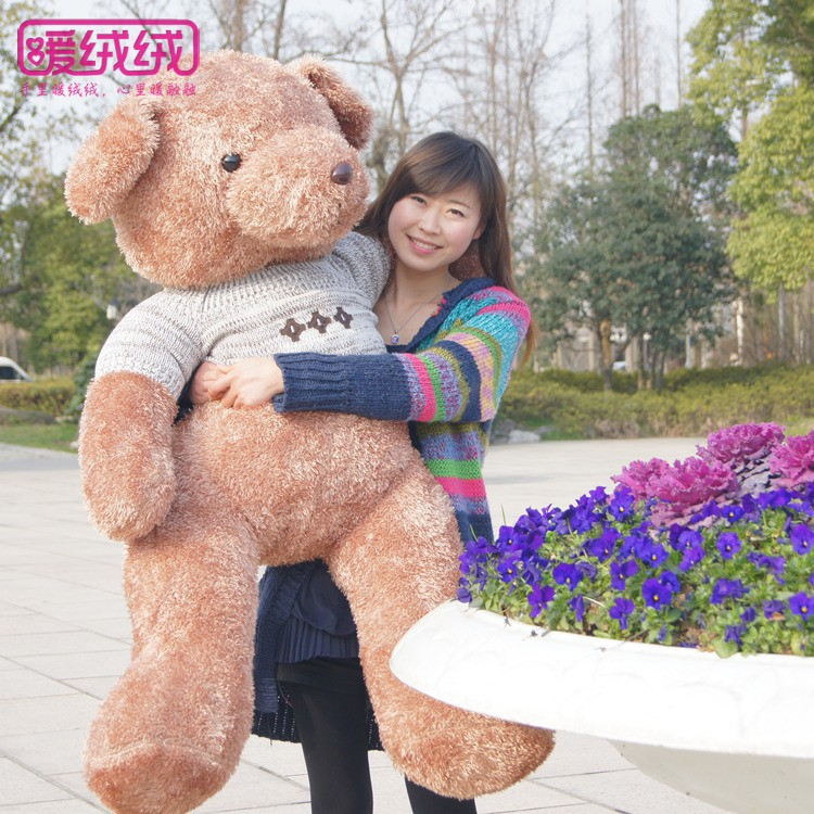 filling toy large 150cm brown teddy bear  sweater bear plush toy hugging pillow, surprised birthday gift w5420 80cm large super cute plush toy dog bulldog husky shiba pug pillow down cotton filling as a gift to the children and friends