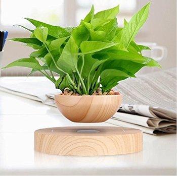 Micro Paysage Jardinage Lévitation pot de fleur Air Bonsaï Pot Magnétique Suspension fleur et air bonsaï pot