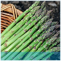 ZLKING 100 шт. белая спаржа Весна овощи Sparrowgrass