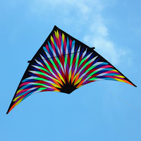 free shipping 6sqm large delta rainbow kite big nylon ripstop outdoor squid toy kites reel bag adult kites eagle parachute power