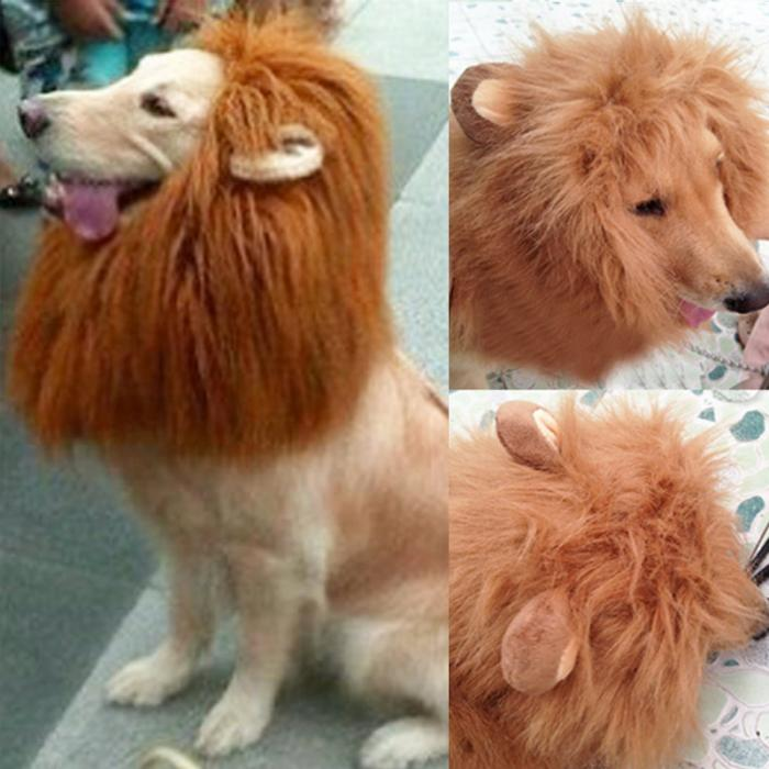 cozy fabric material lion mane wig for your pet is made out of fur and polyester blends perfectly lion