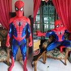 Spider-Man Cosplay c...