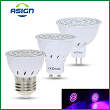 ФОТО grow light 220v 5w e27 gu10 mr16 smd2835 lamp for plants vegs phyto lamp 36 54 72 leds red blue led for plants growth fitolampy