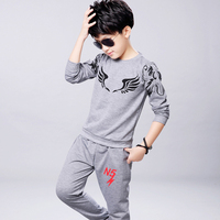Boys Clothing Set Girls Clothing Children Sport Suit Girls Clothes Suits For Boys Autumn 2016