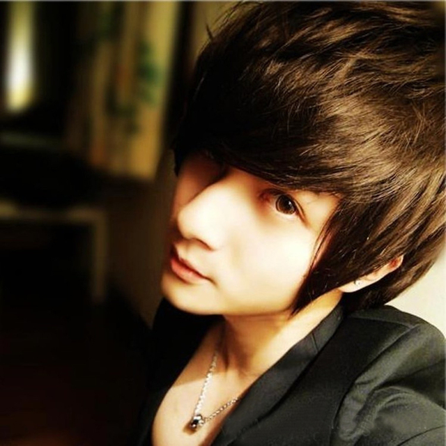 Cool Mens Black Short Wigs For Hair New None Stream Handsome Korean Light
