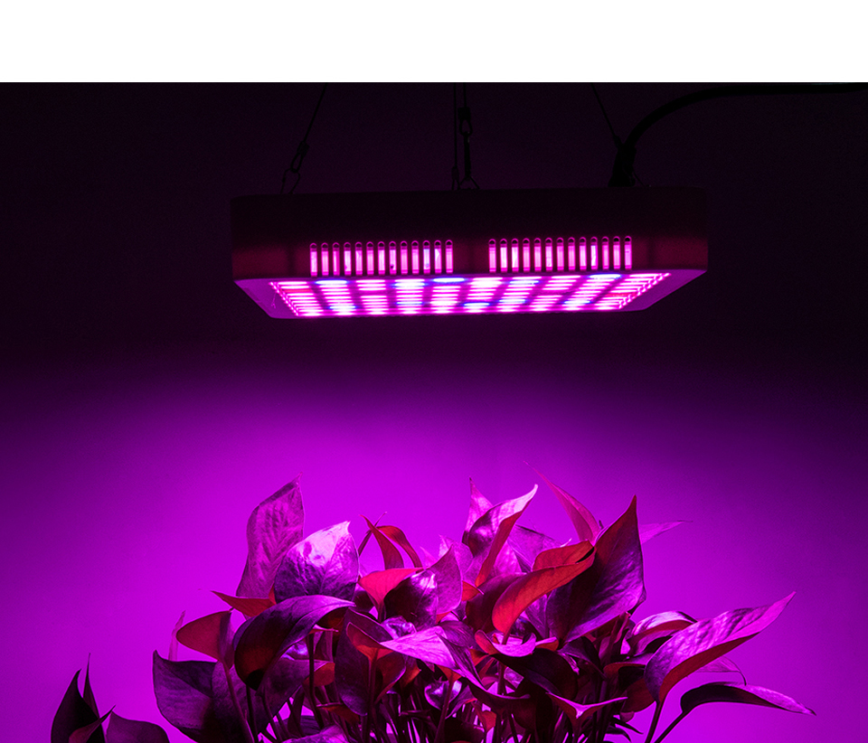 300W Full Spectrum LED Plant Grow Light Lamp For Plant Indoor Nursery Flower Fruit Veg Hydroponics System Grow Tent Fitolampy (2)