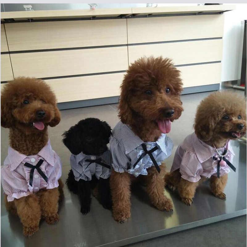 Animais de estimação camisas roupas filhote de cachorro cães pequenos roupas roupas para cães primavera verão nova roupa fordog pano camisa cães gatos camisa vestido