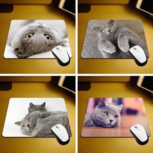 MaiYaCa British Shorthair Cat Mouse Pad Size 18*22cm and 25*29cm