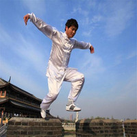 Chinese Kung Fu Suit Tai Chi Clothing Silk Uniform Martial Art Unform Taiji Wushu Kung Fu