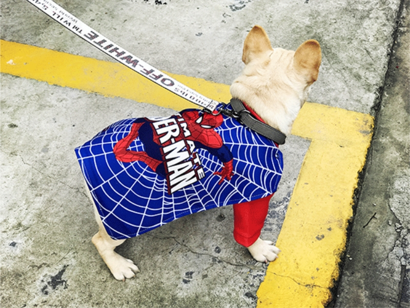dog fancy cosplay clothes (7)