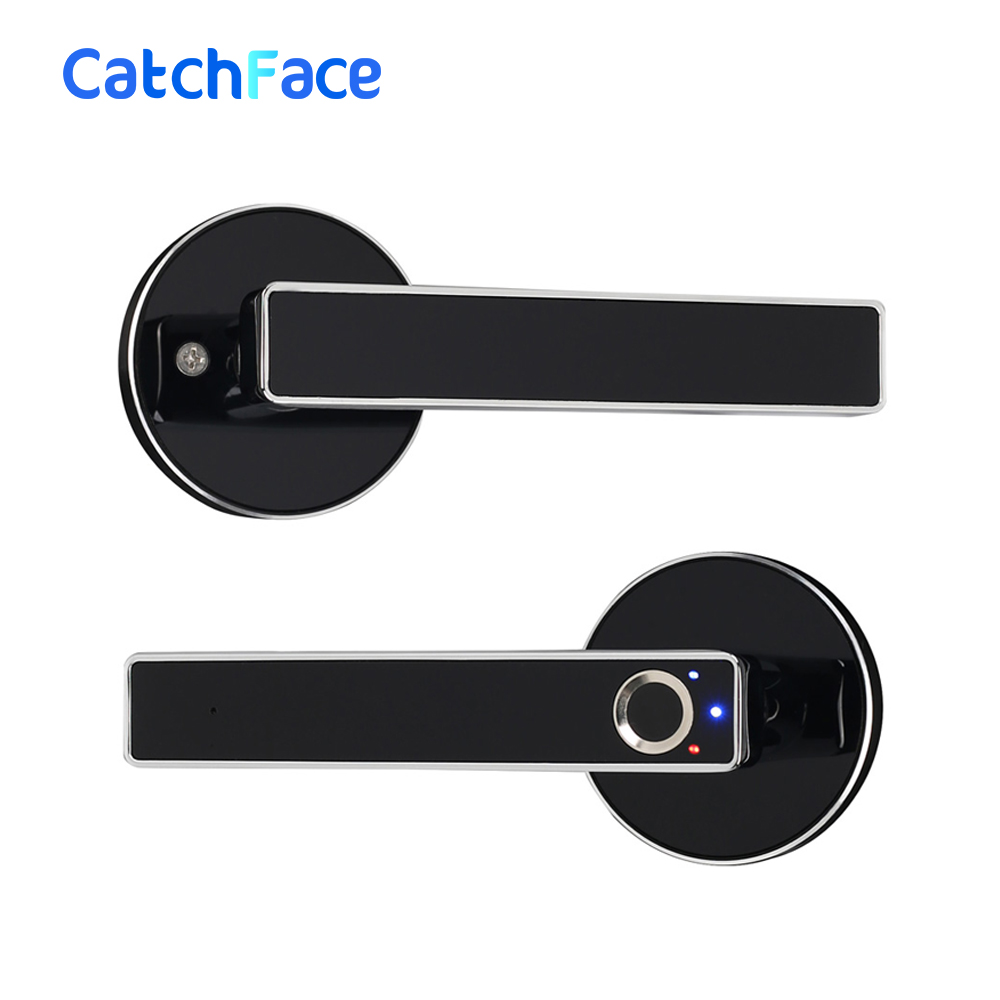 Biometric Fingerprint Door Lock Intelligent Electronic Lock For Home And Office
