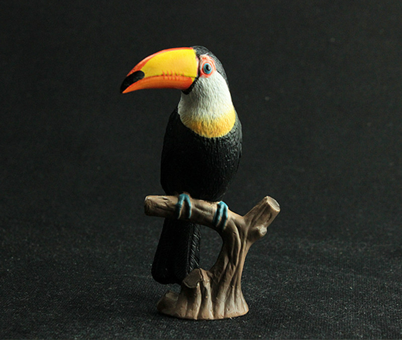 Model-Figures Educational-Toys Collecitible-Doll Animal Children Gift Kids Toucan Black
