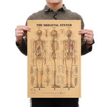 1 PC Kraft Paper Body Structure Retro Poster Vintage Mural Home Decor The Skeleton System Wall Sticker skeleton anatomy poster(China)