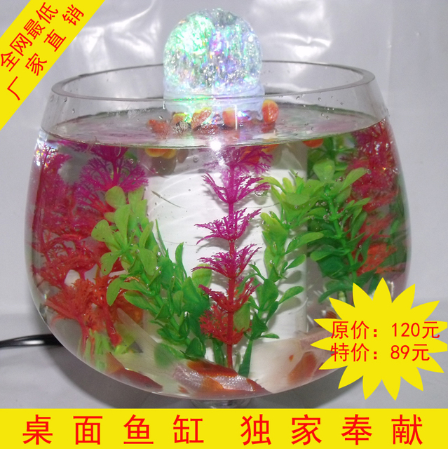 Fishbowl Goldfish Bowl Vase Wedding Gift Plants Stylish Furnishings Housewarming Birthday
