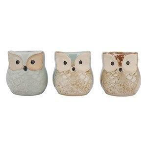 Image 3 - 6 Pcs 2.5 inch Ceramic Owl Succulent Planter Pot Succulent Container Cactus Plant Pot Mini Flower Pot With Holes