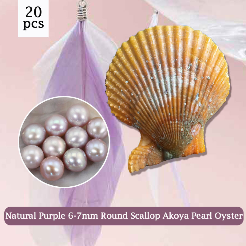 6-7mm AAA Round Akoya Pearls in One Red Oyster Surprising Party Pack with Vacuum-Packing 20pcs Natural Purple Pearls PJW291 cluci free shipping get 40 pearls from 20pcs 6 7mm aaa blue round akoya oysters twins pearls in one oysters
